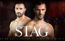 The Stag – Denis Vega, Flex (2016)