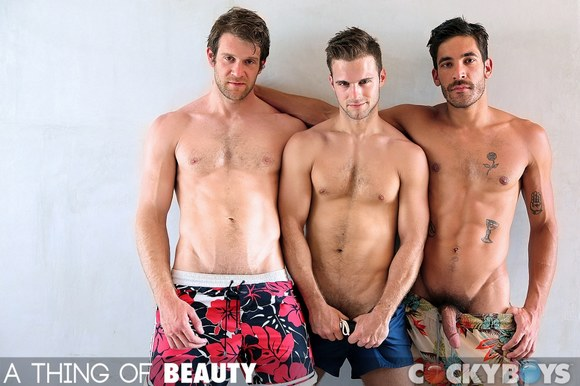 A Thing of Beauty: Free To Be Me – Gabriel Clark, Dale Cooper and Colby Keller