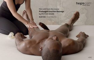 Prolonged Erection Massage (2017)