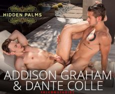 Addison Graham & Dante Colle | Hidden Palms | 2017