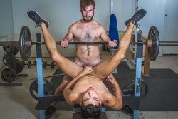 Gym Buddy Wanted – Bravo Delta, Brett Dylan (2017)