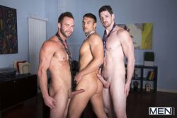 The Sales Call – Rocco Reed, Andrew Stark, Chris Bines (2013)